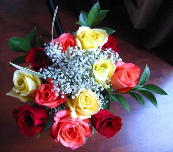 multi_color_roses